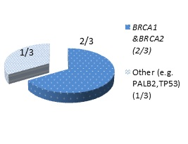 HBOC Figure 2